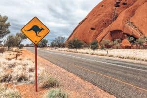 Uluru Stuart Highway Kangaroo Austrailia