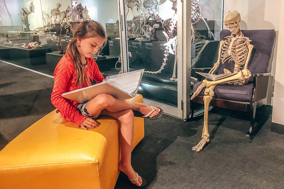 Australian Museaum Sydney Discover Hall Kids