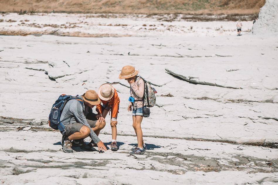 Kaikoura Earthquake Geology Kids Lesson Walk