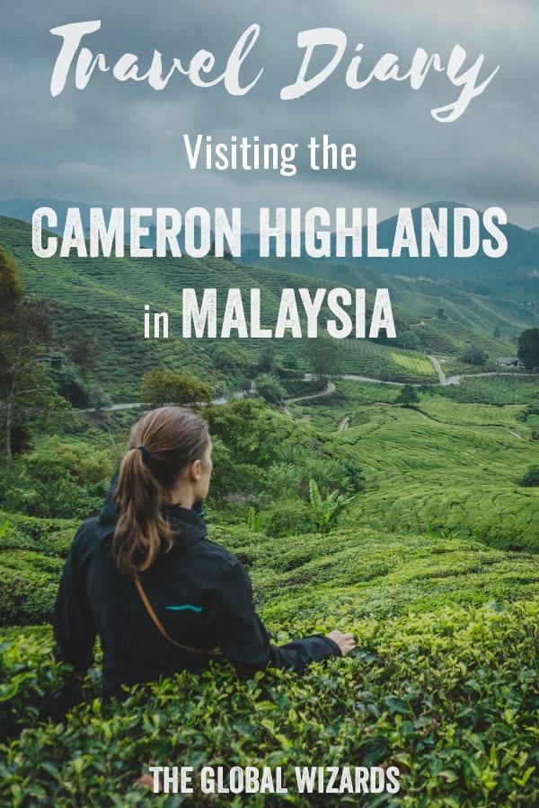 Pinterest Travel Diary Malaysia Cameron Highlands Tea