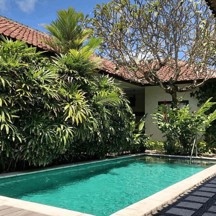 Pool Garden Kembali Lagi Guest House Sanur