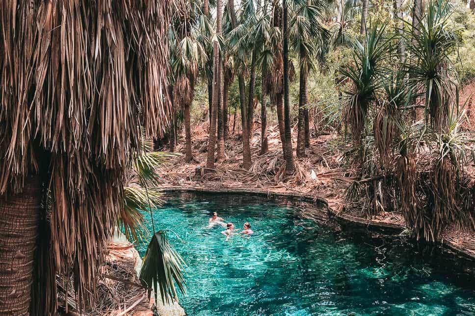 Mataranka Pool Swim Outback Stuart Highway