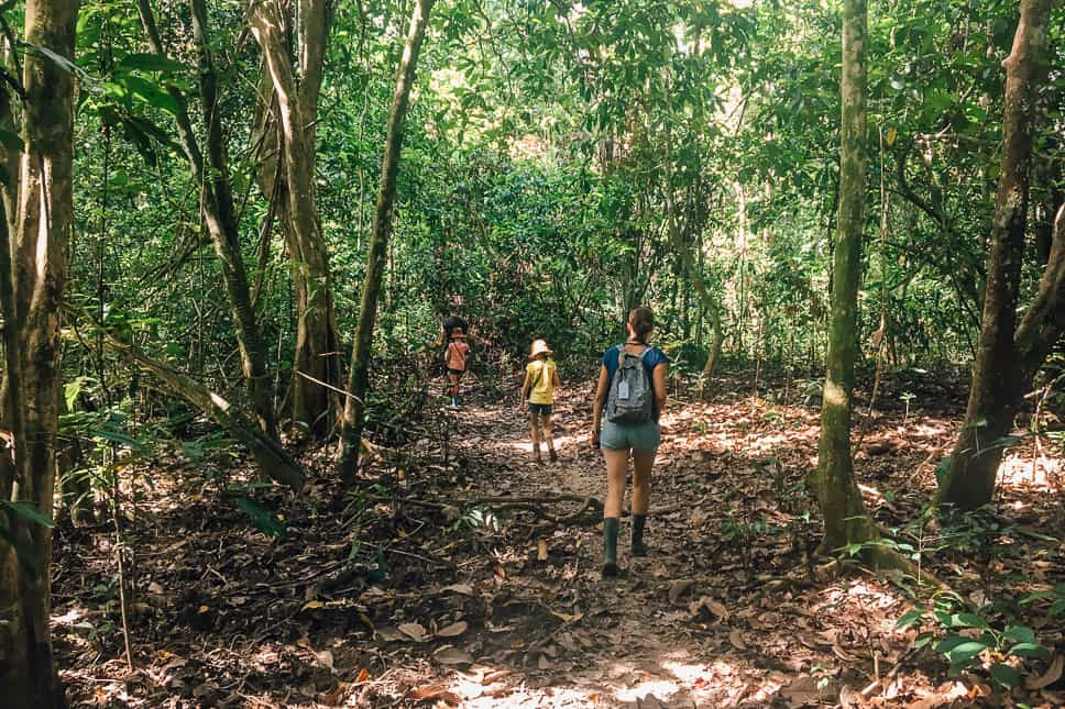 Exploring the rainforest in Borneo with kids during our day jungle walk