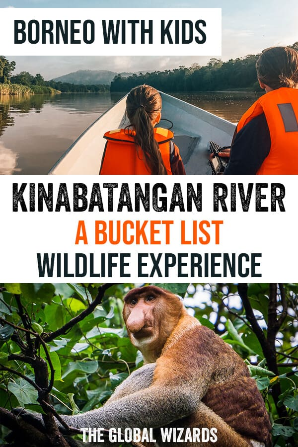 Discover the Kinabatangan River in Borneo with kids