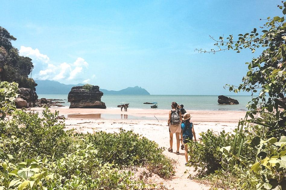 Beach bake National Park Borneo Jungle Walk