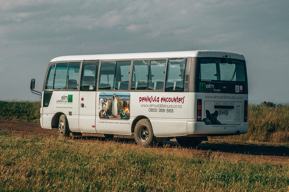 Bus ELM Wildlife Tour Otago Peninsula