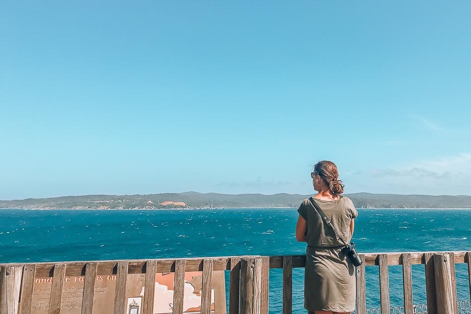 Eden Whale Watching Ocean NSW