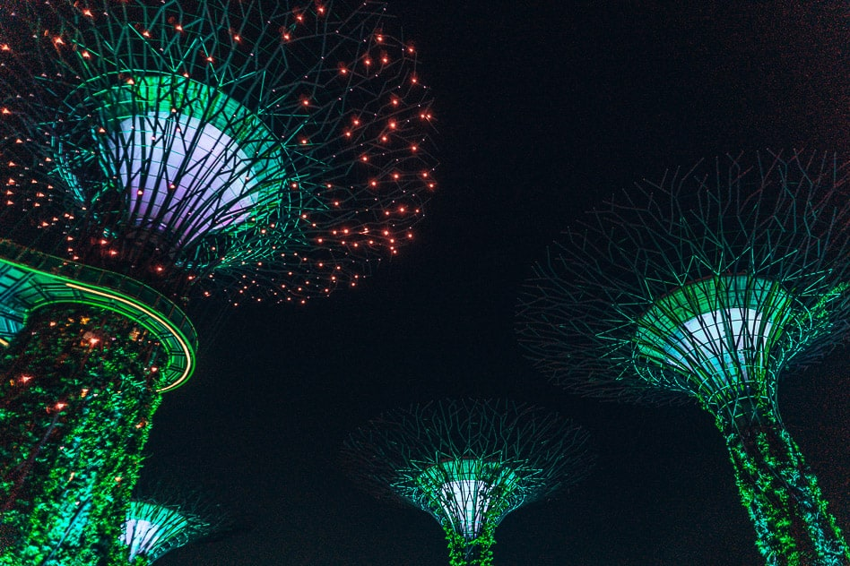 Supertree Grove Gardens By The Bay Light Show Singapore