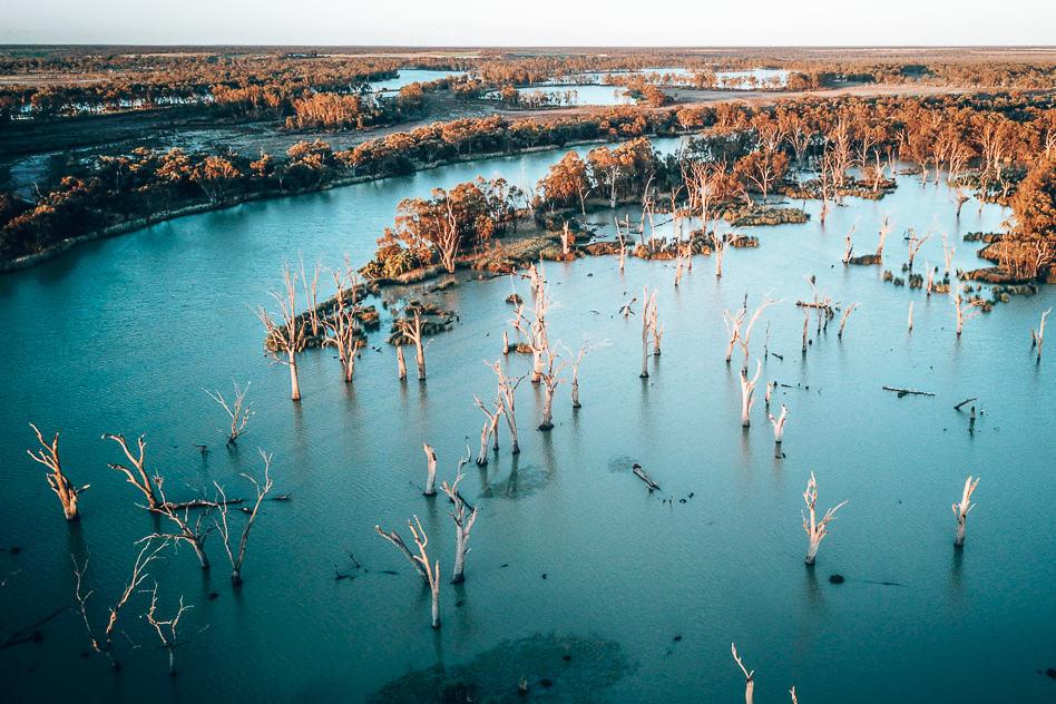 Murray River Kingston Sunset Trees Australia