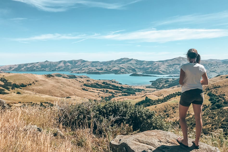Banks Peninsula Viewpoint