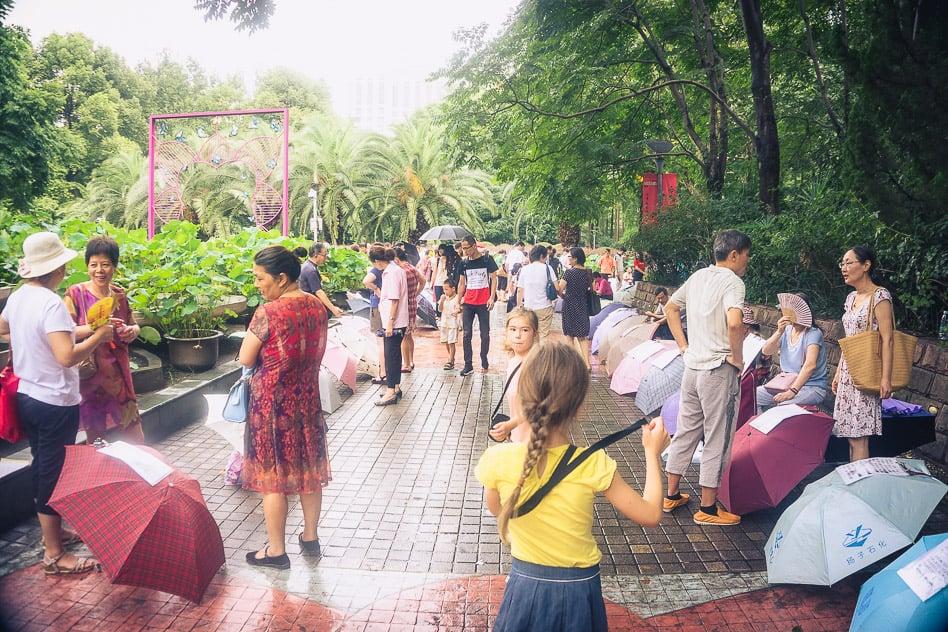 Free experience Parks Shanghai Budget Elderly
